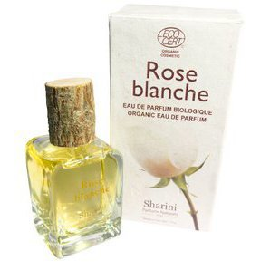 Rose blanche 50 ml